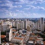 Ibis Paulista Foto