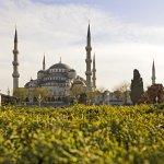 Photo de Novotel Istanbul Zeytinburnu