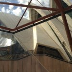 Some of the sails of Sydney Opera House