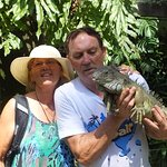 me holding the south american iguanna  great and no charge extra