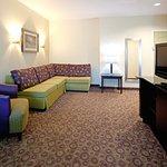 Holiday Inn Express Hotel & Suites Clemson - Univ Area Foto