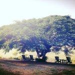 Abangane Guest Lodge Foto