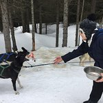 Photo de Mountain Man Dog Sled Adventures