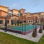 Sports Court®