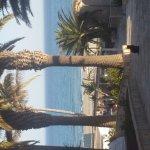 Photo of SBH Monica Beach