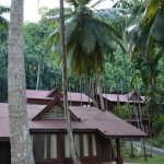 Other cottages in the resort