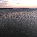 Lake Zemborzycki Εικόνα