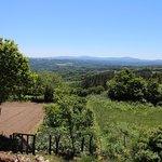 Foto de Casa Camino Turismo Rural