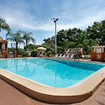 Travelodge Tampa/ West Of Busch Gardens Foto