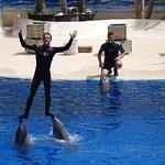 Foto di Zoo Aquarium de la Casa de Campo