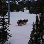 Sleigh ride going past each night