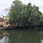 Photo of Nungwi Natural Aquarium
