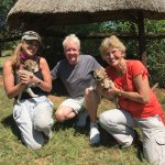 Beth and I with Theory and two 7 day old lion cubs!