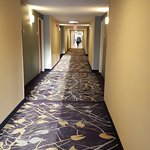 Photo de Hilton Garden Inn Orlando Airport