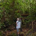 découverte de la jungle avec Pascal