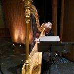 Parker Symphony - Harp