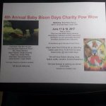Baby Bison Days 2017 4th annual charity powwow  June 17th and 18th