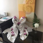Towel folding talent