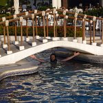 Photo of Buenaventura Grand Hotel & Great Moments All Inclusive