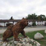 Our resident bear!