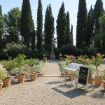 Photo of Jardins de l'abbaye Saint-Andre
