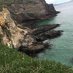 Foto de Otago Peninsula