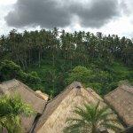 Foto di Viceroy Bali