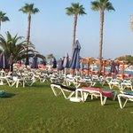 Photo of Auramar Beach Resort