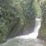 Photo of Mindo Nambillo Cloud Forest Reserve