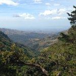 Foto di Camino Verde Bed & Breakfast Monteverde