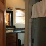 Plaza Suite Bathroom with Shower