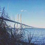 Photo de Vasco da Gama Bridge