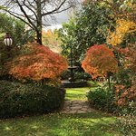 Autumn Colours Front Gardens