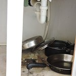 Leaky kitchen drain and rotted cupboard - we added a collection bucket.