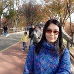 C360_2016-11-12-11-03-00-767_large.jpg