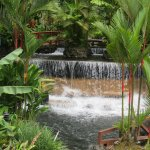 Foto de Tabacon Hot Springs