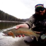 Early Season Opportunities on the Athabasca river for Wild Athabasca Rainbow Trout, #Incredible