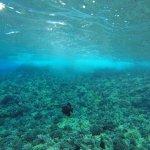 Foto de Aqua Adventures