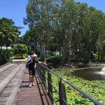 Photo of Sanctuary Palm Cove