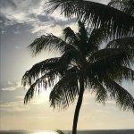 Foto de Hilton Moorea Lagoon Resort & Spa