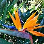 Photo of Lowveld National Botanical Garden