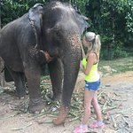 Photo of Nosey Parker's Elephant Camp - Private Day Tours