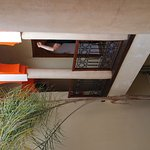 Photo of Riad Amra