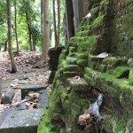 Photo de Roluos Temples
