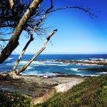 Photo of Cape Xtreme