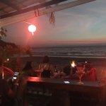 Koala bar restaurant Foto