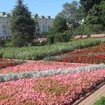 Flowers of Kremlin