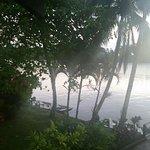 Photo de Tortuga Lodge & Gardens
