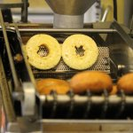 Flipping in the Donut Robot
