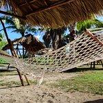 shade are behind beach
